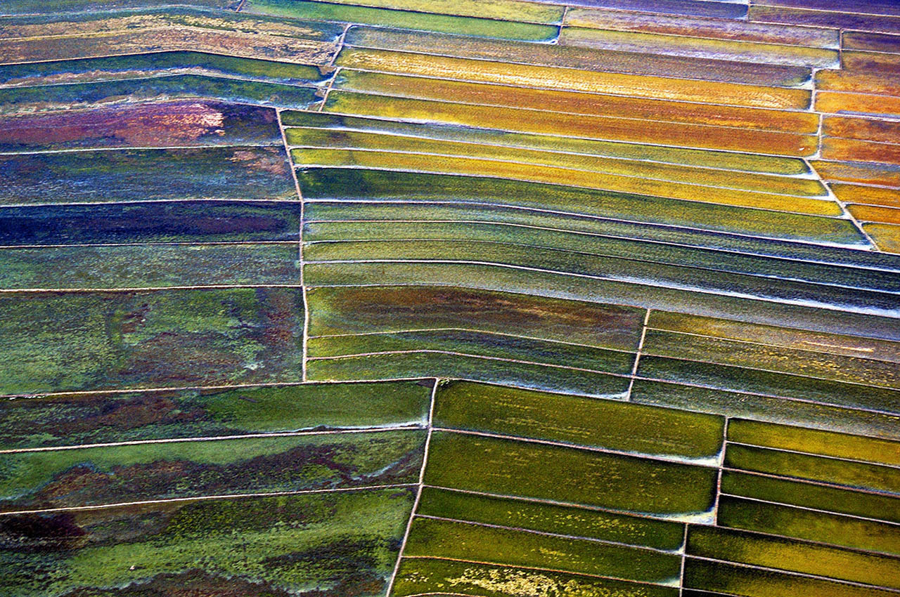Aerial view of farmland outside Manila, Philippines ©2017